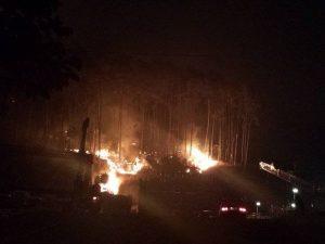 Incêndio atinge mata da Via Expressa em Nova Friburgo