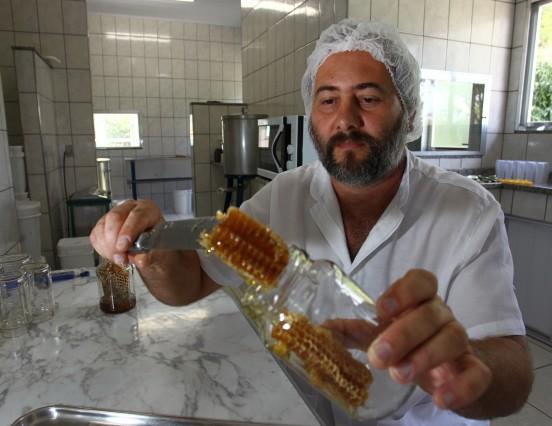 Agricultura familiar do estado fornece novos produtos para alimentação escolar