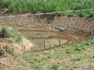 Baixo nível do Rio Macuco assusta moradores de Cordeiro