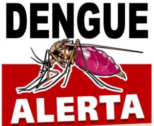 Secretaria de Saúde confirma casos de dengue em Cordeiro e realiza mutirões