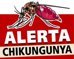 Oito municípios do RJ enfrentam surto de febre Chikungunya