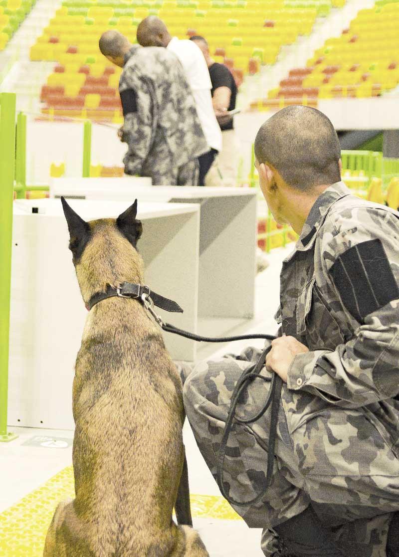 Batalhão de Ações com Cães busca certificação para atuar nas Olimpíadas