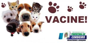 Vacinação contra raiva animal começa no dia 16 na zona rural de Cordeiro