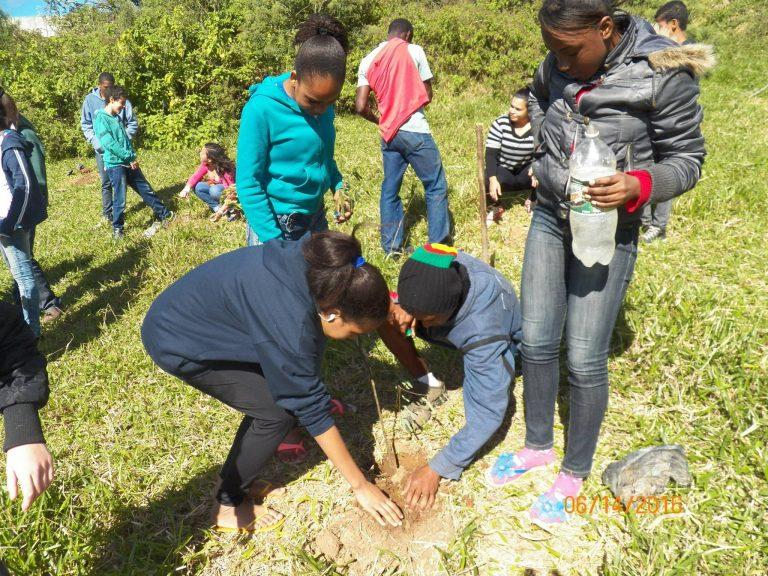 Alunos e escoteiros participam de ações ambientais em Cordeiro