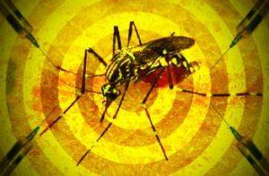 Carmo e Cantagalo, entram na lista de vigilância da febre amarela