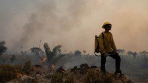 Brasil é o quarto país do mundo que mais mata ativistas ambientais, diz ONG.