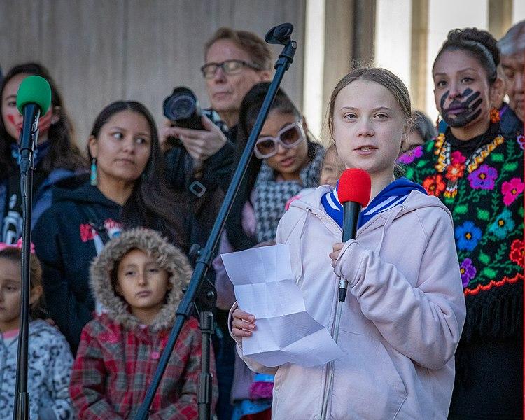 No Senado, Greta Thunberg diz que atuação de líderes do Brasil no meio ambiente é 'vergonhosa'.