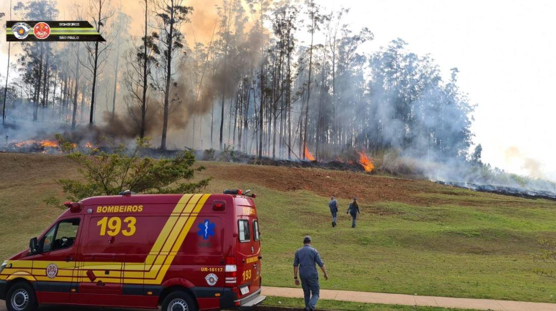Aeronave cai no interior de São Paulo e faz vítimas; bombeiros combatem incêndio.